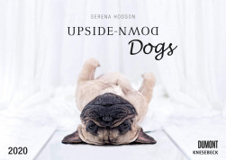 Upside-Down Dogs 2020