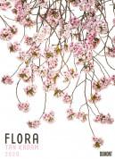 Tan Kadam: Flora 2020