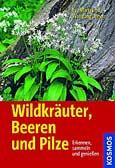 Wildkräuter, Beeren und Pilze