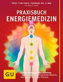 Praxisbuch Energiemedizin