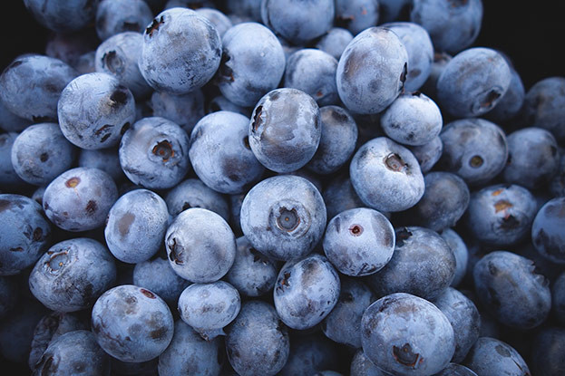 Superfrucht Blaubbere, Heidelbeere