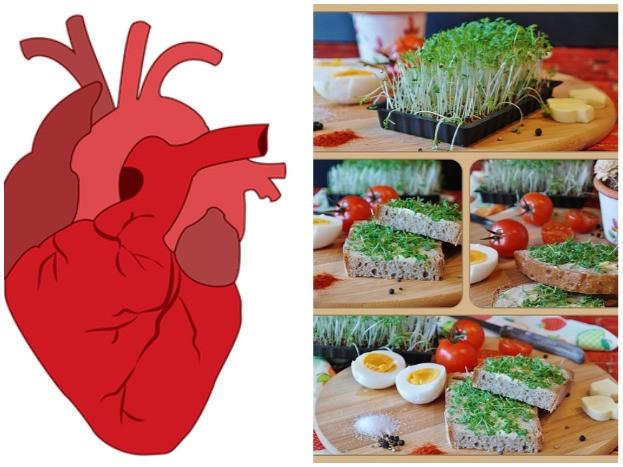 Herz liebt Salz und Gemüse