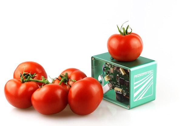 Ein Food-Scanner soll in Zukunft dabei helfen, unnötige Lebensmittelverluste zu vermeiden.