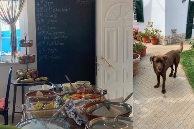 Tages-Programm, Frühstücksbüffet  und Chocolate, der Haus-Labrador