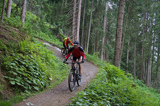 Easyline Trail