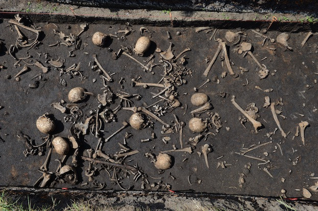 Bisher wurden Gebeine von mehr als hundert Individuen auf dem Schlachtfeld entdeckt.