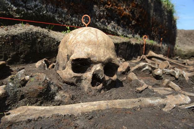 Bronzezeitlicher Schädel an der Tollense