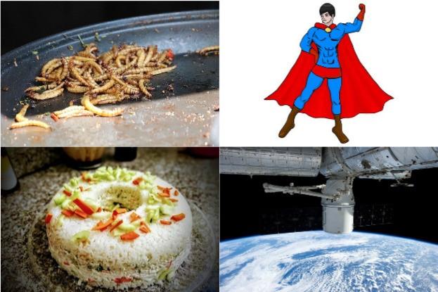 Mehlwürmer für Superman und Sushi im Weltraum