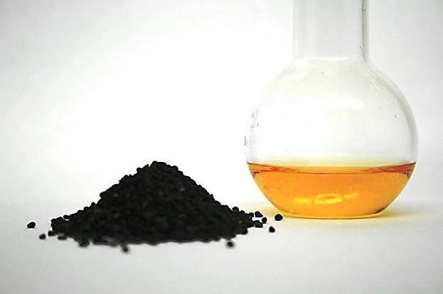 Schwarzkümmelöl wird aus der Nigella Sativa gewonnen und enthält viele Vitamine, Mineralstoffe und ungesättigte Fettsäuren.