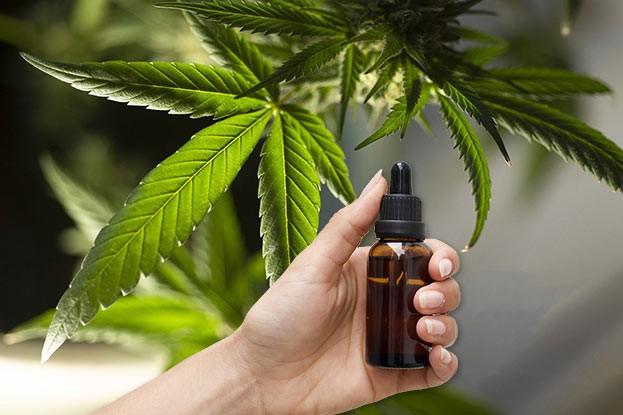 CBD-Öl wird heute bei vielen Beschwerden wie Schmerzen oder Stress verwendet.