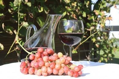 Reveratrol gilt als Jungbrunnen und ist vor allem in Rotwein enthalten - ©Pixabay