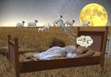 Schäfchen zählen in schlaflosen Nächten - wer kennt das nicht?