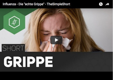 Influenza - Die