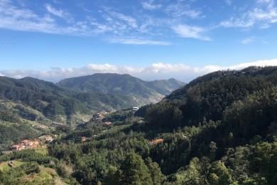 Madeira - HotSpot im Atlantik