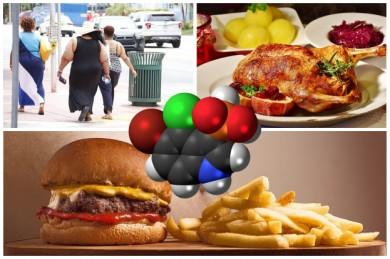 Phosphate sind in vielen Lebensmitteln enthalten