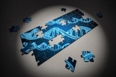 Unsere DNA - noch immer ein Puzzle