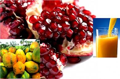 Granatapfelkerne, Papayas, Orangensaft