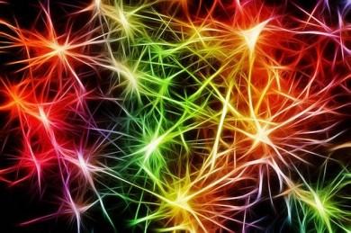 Nervenzellen - ©Pixabay