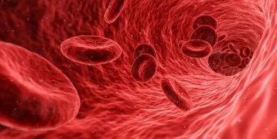 EPFL-Forscher bringen neuen Blutverdünner - ©Pixabay
