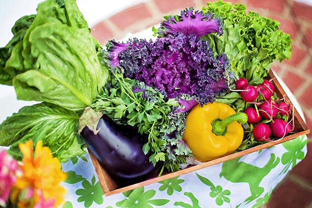 Frisches Gemüse kann Mangelerscheinungen ausgleichen