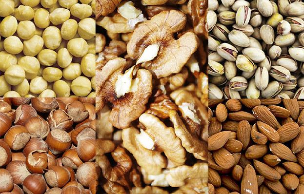 Macadamia-, Hasel- und Walnuss sowie Pistazien und Mandeln