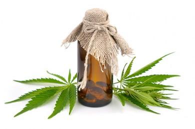 Cannabis - ©spline_x