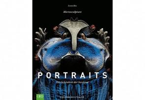 Portraits – Die Schönheit der Insekten