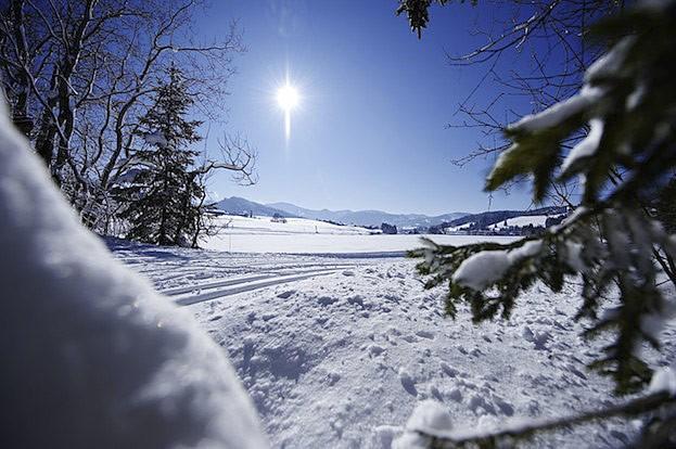 Winterwanderung an einem sonnigen Wintertag