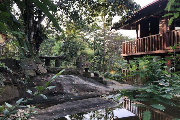 Ökotourismus auf Sri Lanka
