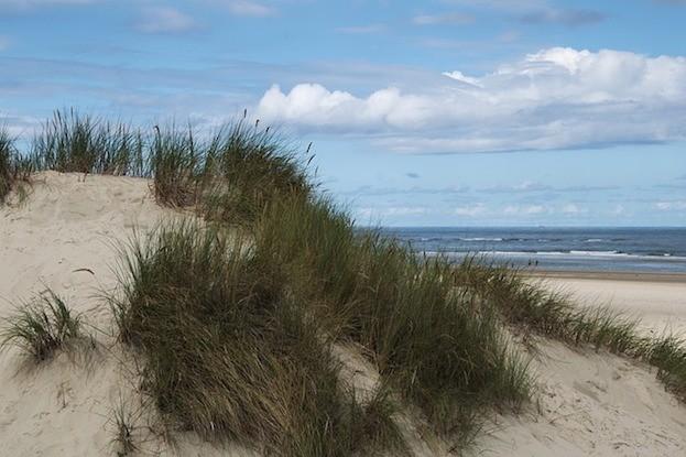 Nordsee-Insel Baltrum: Dünen so weit das Auge sieht