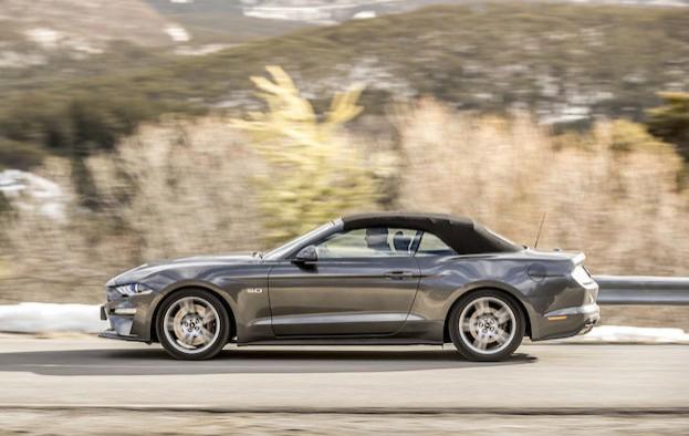 Der Mustang - einfach ein schickes Pony