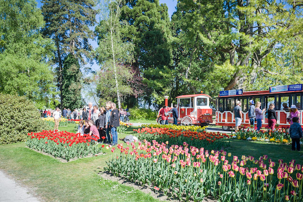 Tulpenfest in Morges am Genfer See