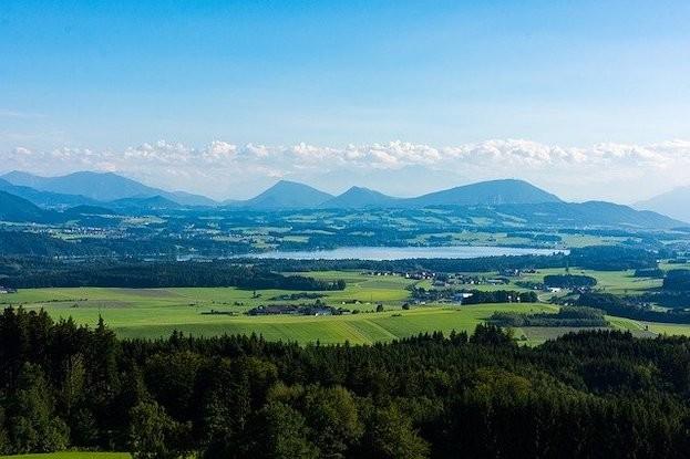 Wallersee im Salzburger Seenland