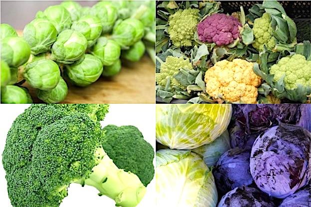 Rosenkohl, Blumenkohl, Brokkoli sowie Weiß- und Blaukraut