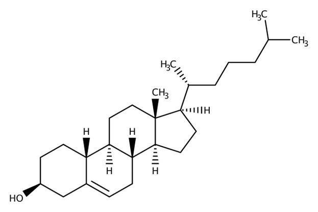 Cholesterin-Struktur