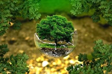 Nachhaltiger Tourismus - nicht nur ein schöner Gedanke - ©Pixabay