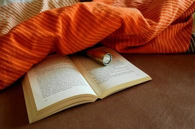 Bücher lesen ist gesund! - ©Pixabay