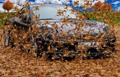 Laub: Vorsicht beim Autofahren
