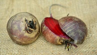 Rote Bete sind farbintensiv und vitaminreich
