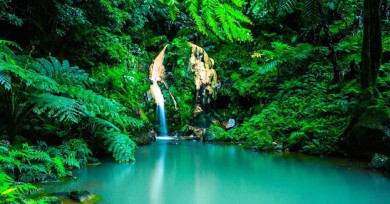 Wasserfall auf den Azoren