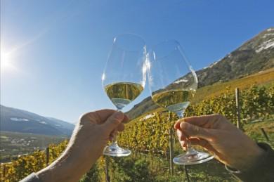 Beim Merano Wine Festival stoßen Gäste aus aller Welt mit aromatischem Wein an  - ©Hotel Therme Meran
