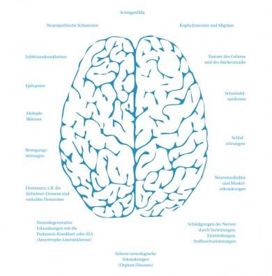 Neurologische Erkrankungen - ©Deutsche Gesellschaft für Neurologie (DGN)