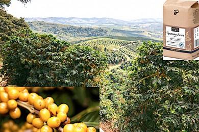 Blick von der Farm Ipanema Arara, gelbe Kaffeebohnen, Ipanema Arara Kaffee-Packung - ©TCHIBO (3)