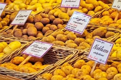 Kartoffeln gibt es zahllosen Sorten - ©Pixabay