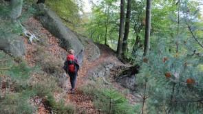 """Wandern auf der ersten Trekkingroute im Elbsandsteingebirge, dem  """"Forststeig Elbsandstein"""""""