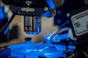 Mit Hilfe von Optogenetik können die thalamischen Zellen im Gehirn mit Lichtimpulsen gesteuert werden