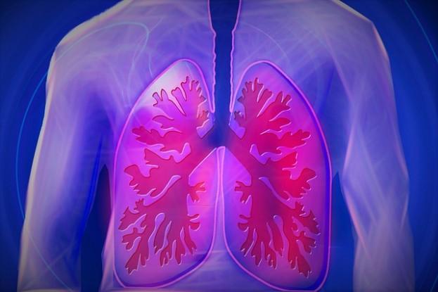 Gesunde Lunge